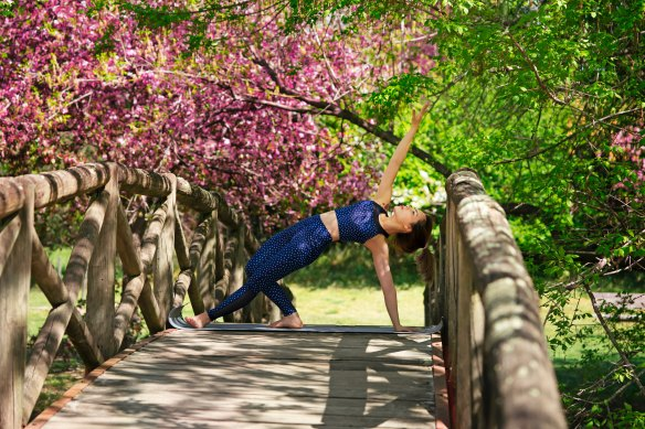 wooden bridge yoga