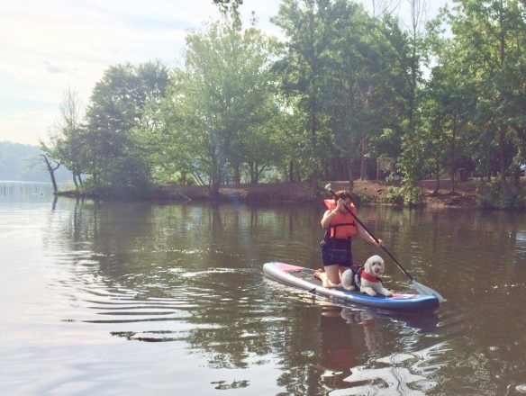 scooby sup salem lake